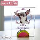 【ペット位牌】フレームクリスタル可愛い カラー 位牌 送料無料 ペット供養 犬 猫 ガラス クリスタル いはい 49日 きれい シンプル 写真入り
