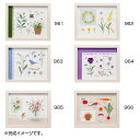 【代引き・同梱不可】刺繍キット 青木和子 カラーコレクション