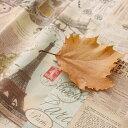 生地 布 入園入学 北欧風ハーフリネン/幅132cm≪ ヴィンテージペーパー ≫【10cm単位販売】【ビンテージ】【ユニーク】ニュースペーパー 英字新聞 Vintage paper カルトナージュ
