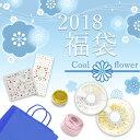 【DM便送料無料】 irogel 2018福袋 デザインセット 寒色系