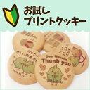 お試しプリントクッキー(ありがとうVer)【送料無料】【02P06Aug16】