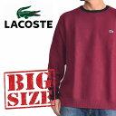 大きいサイズ メンズ ラコステ LACOSTE ワンポイント クルーネック ニット セーター カットソー XXXL