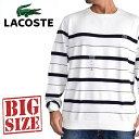大きいサイズ メンズ ラコステ LACOSTE ワンポイント ボーダー クルーネック ニット セーター カットソー XXXL