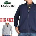 大きいサイズ メンズ ラコステ LACOSTE ワンポイント ワンポイント フルジップ ニット セーター アウター カーディガン XXL XXXL XXXXL