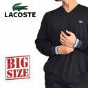 大きいサイズ メンズ ラコステ LACOSTE ニット セーター コットン Vネック リブライン XL XXL XXXL