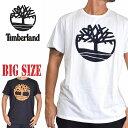 ティンバーランド 半袖 ツリーロゴ Tシャツ USA直輸入 Timberland XL XXL 大きいサイズ メンズ [M便 1/1]