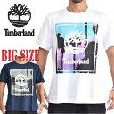 ショッピングツリー ティンバーランド 半袖 パームツリーボックスグラフィックロゴ Tシャツ Timberland USAモデル XL XXL XXXL 大きいサイズ メンズ [M便 1/1]