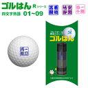 ゴルフボール スタンプ「ゴルはん」四文字熟語Rシリーズ・No01?09メール便ご利用で送料は無料です(宅配便は有料です)