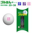 ゴルフボールスタンプ「ゴルはん」四熟語Rシリーズ・No29〜38メール便ご利用で送料は無料です(宅配便は有料です)ゴルハン・ごるはん