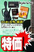 (お取り寄せ)セピアクルー アコースティックギター 8点入門セット/ブラック Sepia Crue FG10BK VALUE SET(ギター入門セット)(アコギセット)(フォークギターセット)(スターターセット)(保証付き)