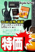 (お取り寄せ)セピアクルー アコースティックギター 8点入門セット/ビンテージサンバースト Sepia Crue FG10VS VALUE SET(ギター入門セット)(アコギセット)(フォークギターセット)(ギターセット)(スターターセット)(保証付き)