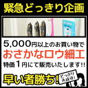 商品5000円以上ご購入者限定企画!お魚ロウ細工1円にて販売!販売条件【ドッキリを実施後、レビューに内容記載してください】