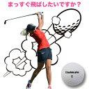 飛ぶ ゴルフボール 送料無料 レディース...