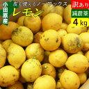 【送料無料】減農薬 国産 レモン 訳あり 4kg 小田原産 ノーワックス 有機肥料 家庭用
