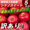 【送料無料】信州りんご 訳あり シナノスイート 5kg 葉取らず 長野産
