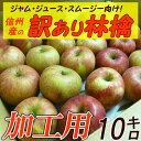 【送料無料】【加工用りんご】長野産 訳ありリンゴ アウトレット 10kg 葉とらずリンゴ 規格外
