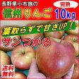 【送料無料】長野産 信州りんご 10kg 小布施 減農薬