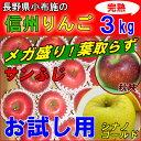 信州りんご 訳あり 3kg 長野産 減農薬 お試し【サンふじ】