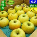 【送料無料】 長野産 信州 りんご シナノゴールド 5kg 小布施