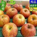 【送料無料】 山形 ステビア農法 葉取らず サンふじ りんご 10キロ 家庭用 高糖度