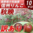 【送料無料】 訳あり 長野産 信州 りんご 秋映 10kg 規格外の赤黒リンゴ! アウトレット!【9月下旬〜】