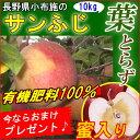【送料無料】サンふじ 葉取らずりんご 蜜入り 有機肥料使用リンゴ! 長野 訳あり 10kg