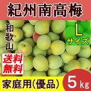 【送料無料】紀州和歌山 南高梅 5kg Lサイズ 優品(家庭用)【青梅・完熟梅】