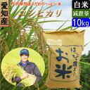 【31年産新米】【白米】 送料無料 愛知産 特別栽培米 コシヒカリ 10kg ハッピー米