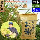 【30年産】【白米】 送料無料 愛知産 大地の風 5kg 低農薬米 ハッピー米