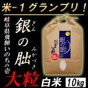 【白米】 岐阜産 銀の朏(ぎんのみかづき) いのちの壱 お米10kg 大粒 日本一のお米に選ばれまし