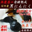 【送料無料】【無農薬】信州産 発酵熟成 黒にんにく 10玉 無臭の黒ニンニク