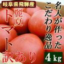 【送料無料】 名人が作った トマト 訳あり 4kg箱 麗夏 岐阜県飛騨 とまと