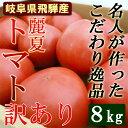 【送料無料】 名人が作った トマト訳あり 8kg 麗夏 岐阜県飛騨 とまと