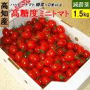 高知県 完熟 ハッピートマト 高糖度ミニトマト 1.5kg 甘くておいしい!送料無料