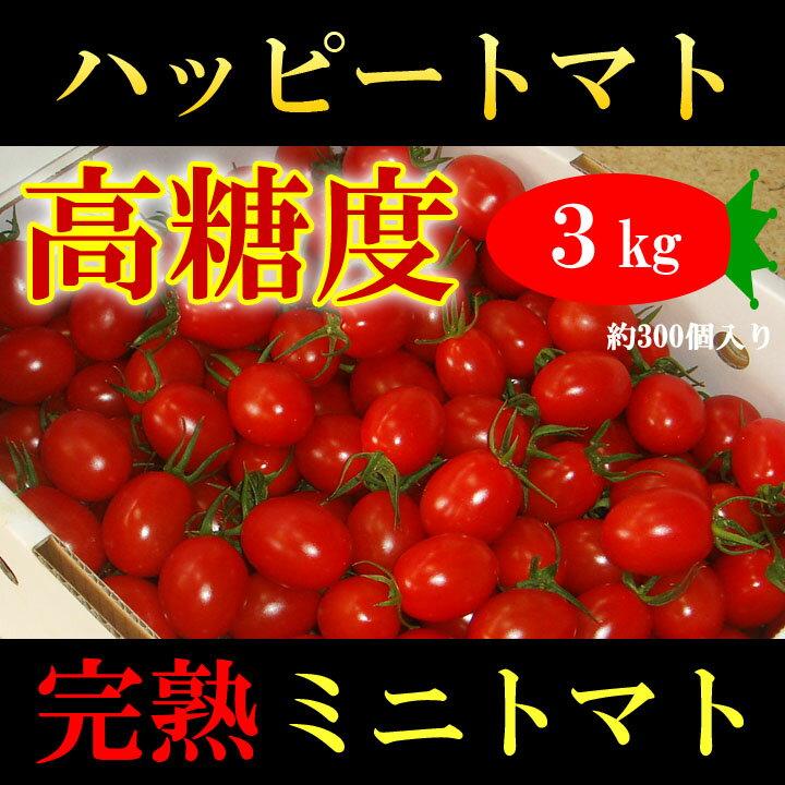 高知県 完熟 ハッピートマト (高糖度ミニトマト) 3kg 甘くておいしい!