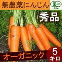 【 有機JAS にんじん 5kg 】 【熊本産】無農薬 人参 秀品 5kg オーガニック 正品 まとめ買い
