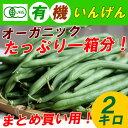 【送料無料】有機いんげん 2kg 一箱 まとめ買い 無農薬のオーガニック インゲン豆