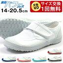 教育パワーシューズ 14.0〜20.5cm 上履き キッズ スクールシューズ 内履き 子供靴 学校 ...