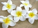 Artificial flower / frangipani [5 medium size / white ケ] [フランジパニ / horse mackerel Ann / Bali / resort] [display / interior / miscellaneous goods] [present / Lady's] [email service impossibility]