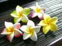 Artificial flower / frangipani [5 SS size / color ケ] [フランジパニ / horse mackerel Ann / Bali / resort] [display / interior / miscellaneous goods] [present / Lady's] [email service impossibility]