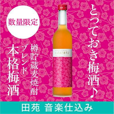 【田苑女子がつくった梅酒】とっておき梅酒♪ リキュール 梅酒