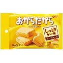 江崎グリコ 【ケース販売】グリコ おからだから チーズケーキ 2個×10袋 E448346H