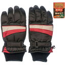 【あす楽対応_関東】NICHIEI 子供用 スキー防寒5指手袋 #SP-071 赤色 サイズ/JM (赤色サイズ/JM) #SP-071-RDJM