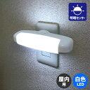 LEDセンサー付きライト 屋内専用 白色 周囲が暗くなると自動点灯 ワイドに発光するタ