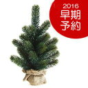 ◎PLASTIFLOR / RS GLOBAL TRADE 【卓上ミニ クリスマスツリー】お得なクーポン付!