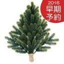 ◎PLASTIFLOR  RS GLOBAL TRADE 【壁掛け式クリスマスツリー】お得なクーポン付!