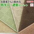 CC2380 (A) お医者さんがすすめる 防ダニカーペット 遮音カーペット 三畳 3畳 3帖 176×261cm