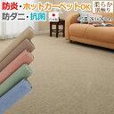 カラフルループ (Y) 激安 お値打ち カーペット 絨毯 防...