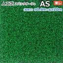 スパックターフ AS (R) 人工芝 約0.9m幅×20m レギュラーシリーズ 東レ 一般家庭やパブリックスペースに