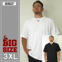 大きいサイズ メンズ SOUTHPOLE(サウスポール)無地Tシャツ
